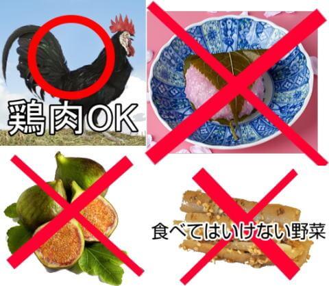 食事で気をつけるべきこと