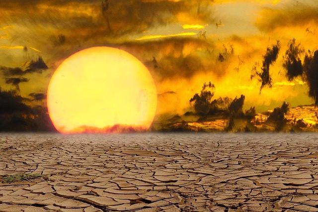 灼熱の乾燥した台地