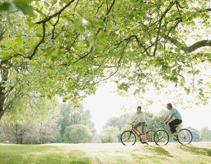 自然の森の中でのサイクリング